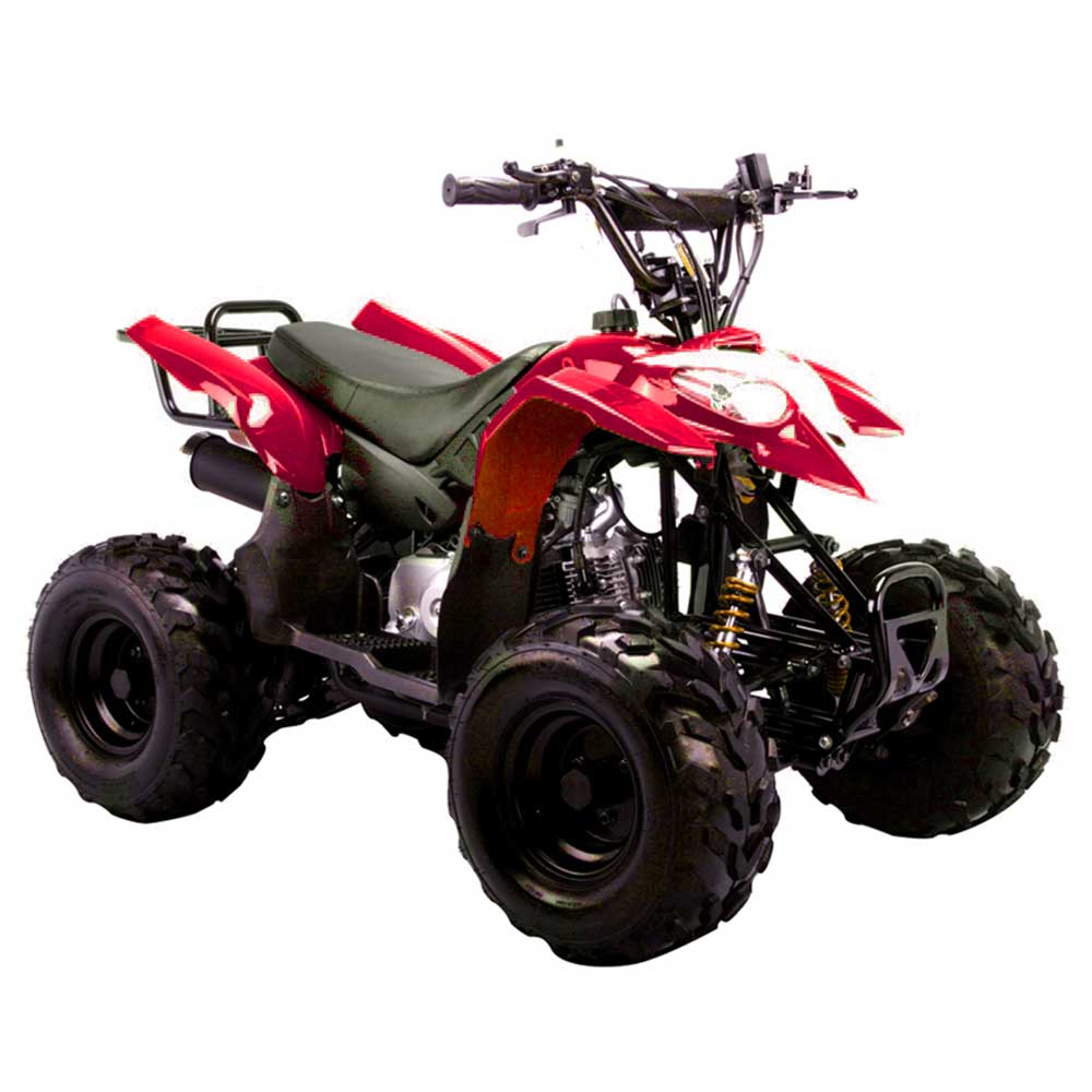 Kids ATVs, Beginner 4 Wheelers, 50cc 100cc 110cc 150cc Youth ATVS