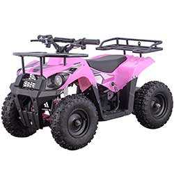 Monster 500W Kids Electric ATV