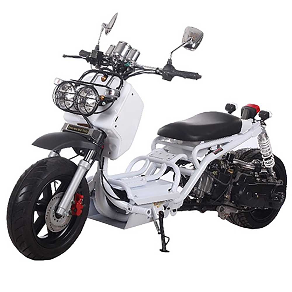 Honda Ruckus Related Keywords Amp Suggestions Custom Honda Ruckus  Mad Dog 50cc Parts | Motorcycle Review and Galleries
