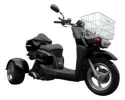 Ice Bear Ace 50S9R Trike Scooter (Color: Black)