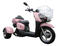 Ice Bear Ace 50S9R Trike Scooter (Color: Pink)