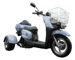 Ice Bear Ace 50S9R Trike Scooter (Color: Silver)