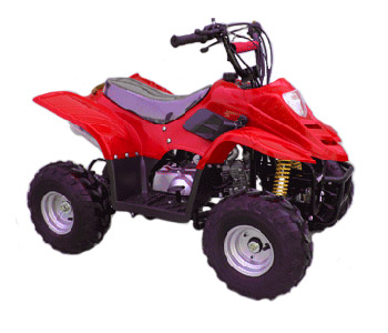 Youth Mini ATV