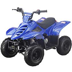Boulder 400X 110cc Youth ATV