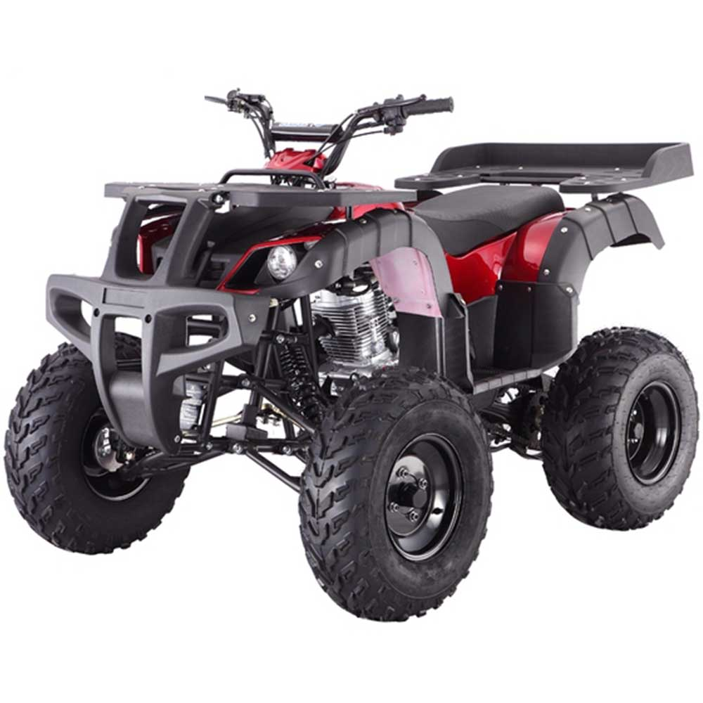 tao rhino 250 atv. Black Bedroom Furniture Sets. Home Design Ideas