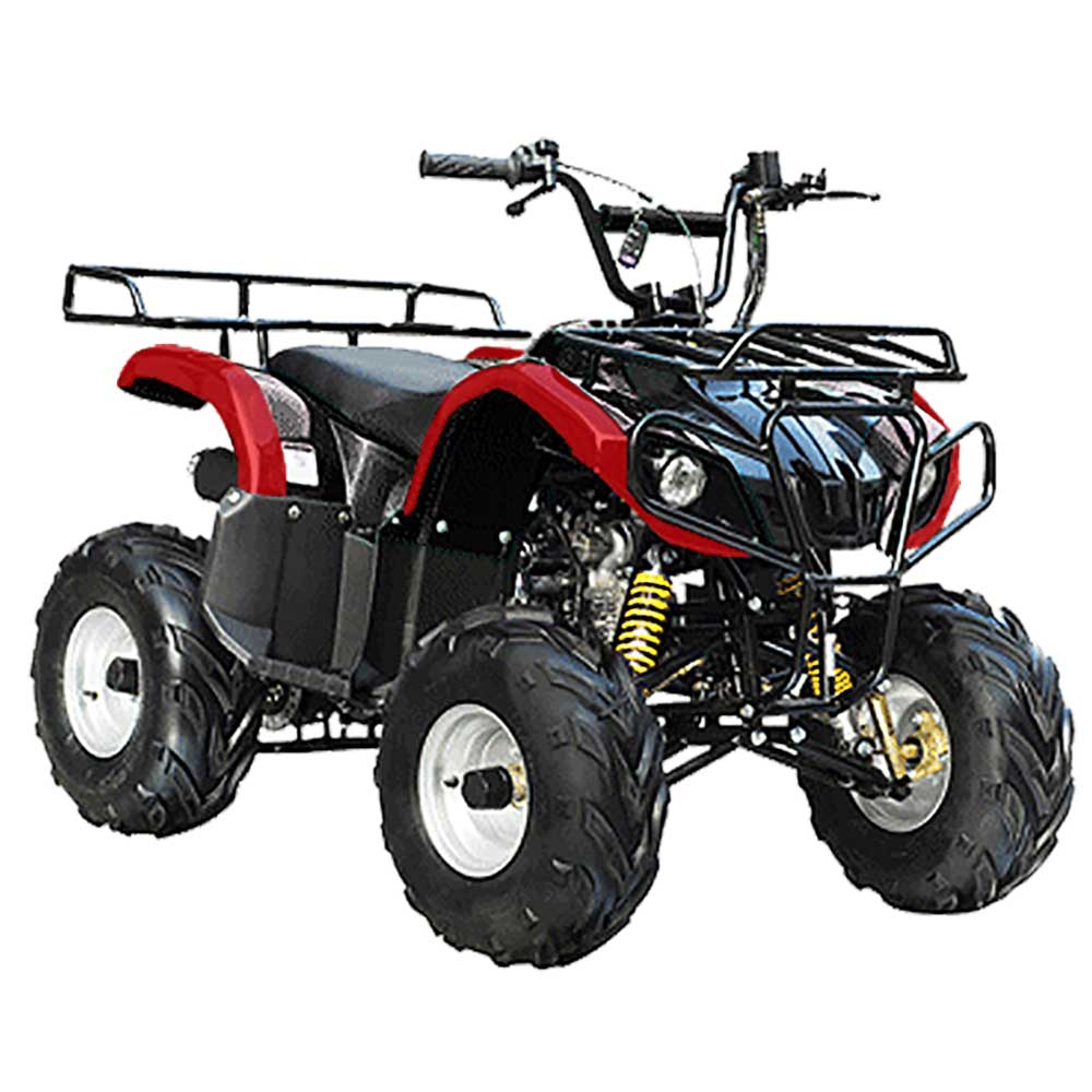 Go karts kids go carts scooters beginner youth atvs for Motorized atv for toddlers