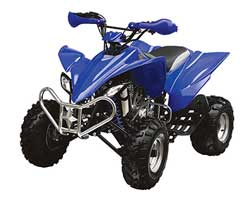 T250CX Full Size Sport ATV