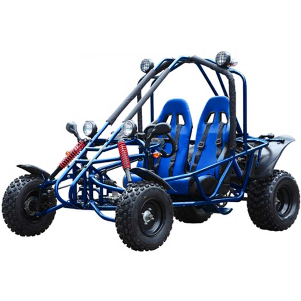 Tao Targa 150 Go Kart
