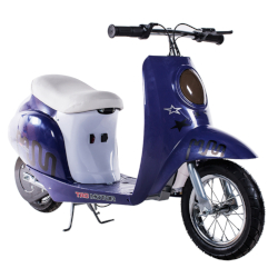 TaoTao CometScooter 250W Electric Scooter