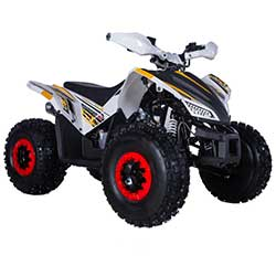 Tao Rex 120 Youth ATV