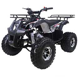 Tao TForce XR ATV