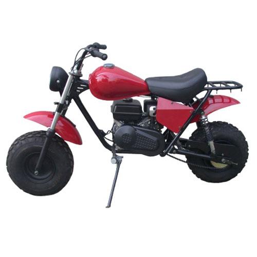 Really. Used adult mini bikes