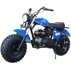 TrailMaster MB200-2 Mini Dirt Bike