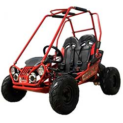 TrailMaster Mini XRX+ Plus Kids GoKart