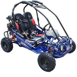 TrailMaster Mini XRX/R GoKart