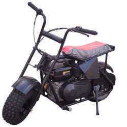 Trailmaster Storm 200 Mini Bike