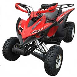 Vitacci Flying Machine 200 Sport ATV