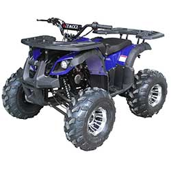 Vitacci Rider 10 DLX 125cc Youth ATV
