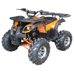 Kids ATVs, Beginner 4 Wheelers, 50cc 100cc 110cc 150cc Youth